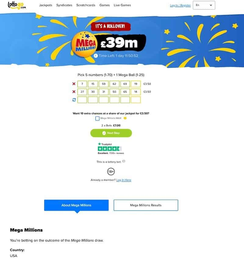 Lottery ticket view at Lottogo lottery website